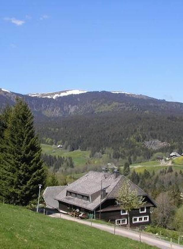 Villa Roman - Omgeving - Feldberg